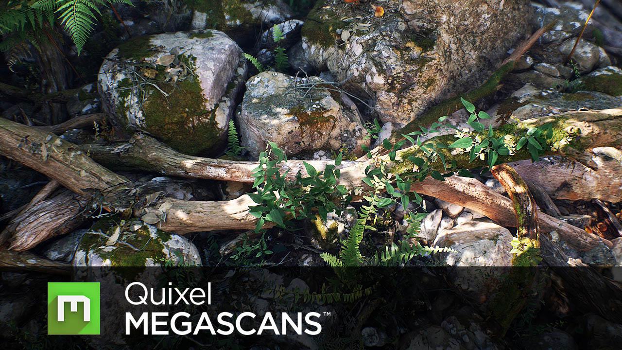 Quixel - MEGASCANS - Subscription (1 year)
